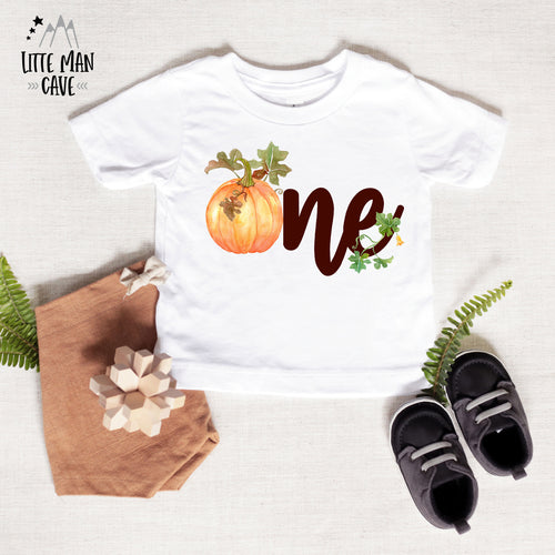 One Pumpkin Birthday Bodysuit , Fall Baby Clothes