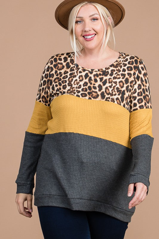 Plus Size  Colorblock Long Sleeve Top