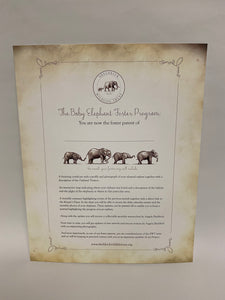 SWT Foster Certificate Gift Packet