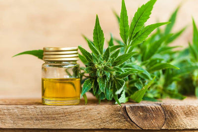 Medicinal Benefits of CBD