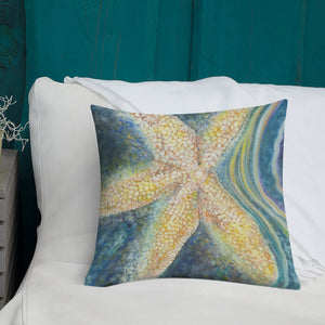 Resting Star Pillow
