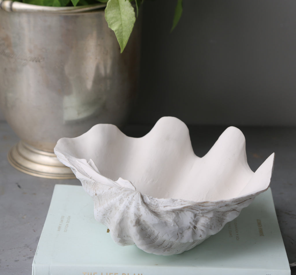 24cm Faux Giant Clam - Sun Bleached Base with Matte Interior