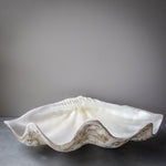 75cm Faux Giant - Clam Dark Base Pearly Interior