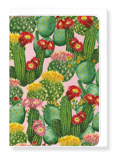 Ezen Designs - Colourful cacti - Greeting Card - Front