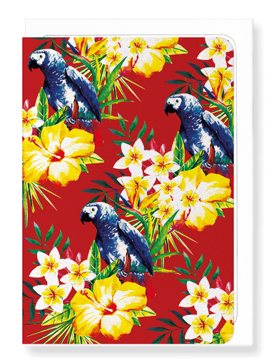 Ezen Designs - Parrot messenger - Greeting Card - Front