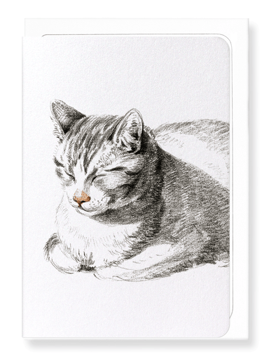 Ezen Designs - Lying cat diagonally (1808) - Greeting Card - Front