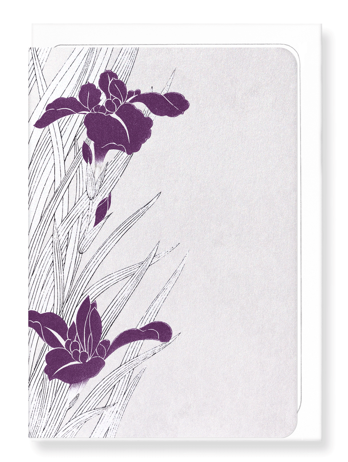 Ezen Designs - Purple iris design - Greeting Card - Front