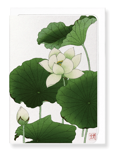 Ezen Designs - Lotus flower - Greeting Card - Front