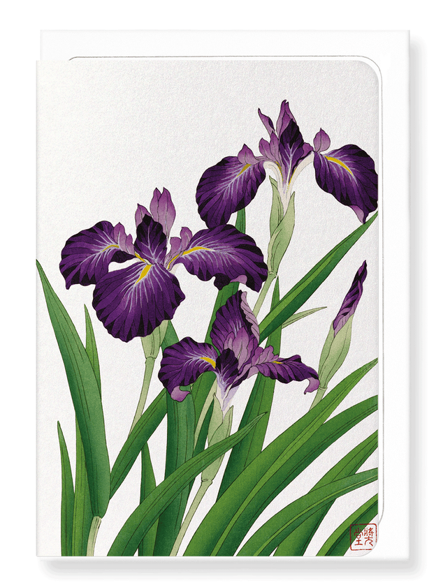 Ezen Designs - Purple iris - Greeting Card - Front
