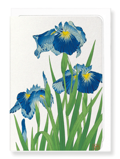 Ezen Designs - Blue iris - Greeting Card - Front