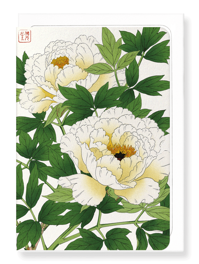 Ezen Designs - White peony - Greeting Card - Front