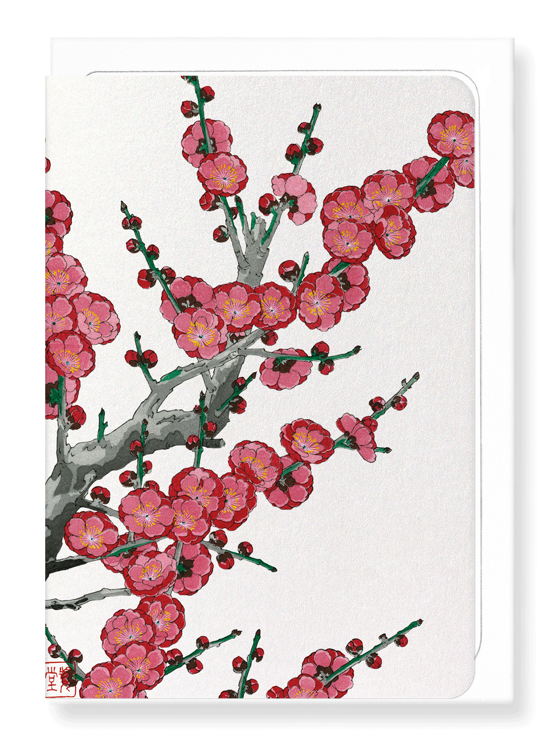 Ezen Designs - Red plum blossom - Greeting Card - Front