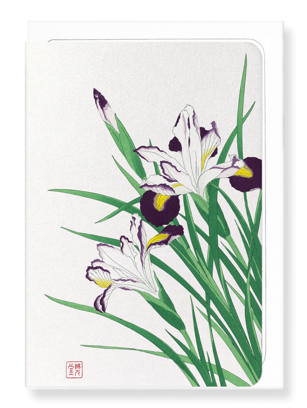 Ezen Designs - Irises - Greeting Card - Front
