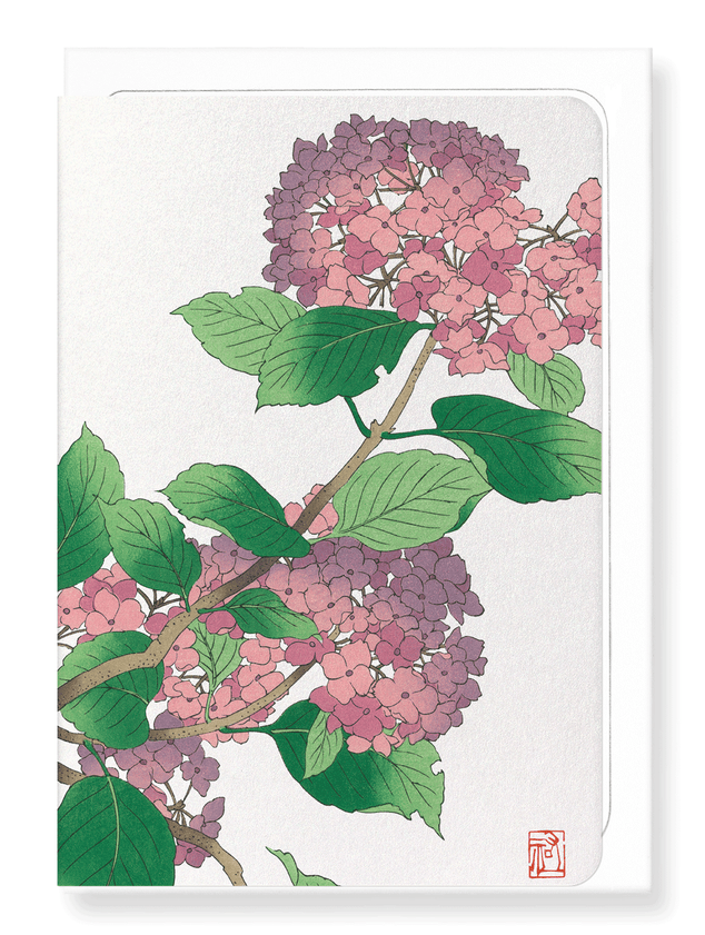 Ezen Designs - Hydrangea - Greeting Card - Front