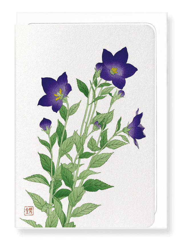 Ezen Designs - Purple bell flower - Greeting Card - Front