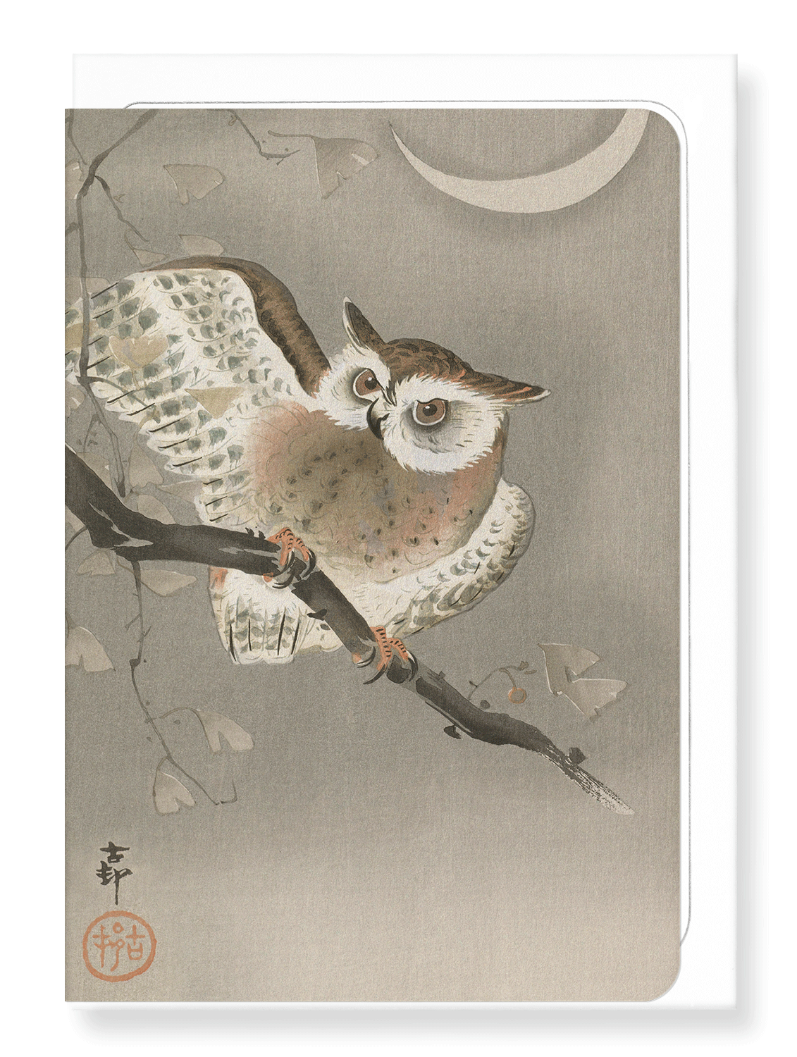 Ezen Designs - Long-eared owl - Greeting Card - Front