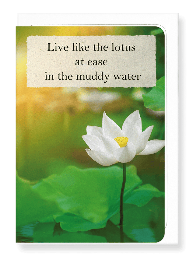 Ezen Designs - Lotus in the light - Greeting Card - Front