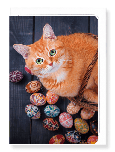 Ezen Designs - Easter cat - Greeting Card - Front