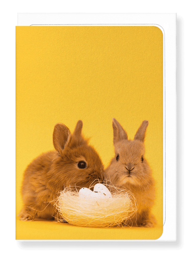 Ezen Designs - Easter bunnies - Greeting Card - Front