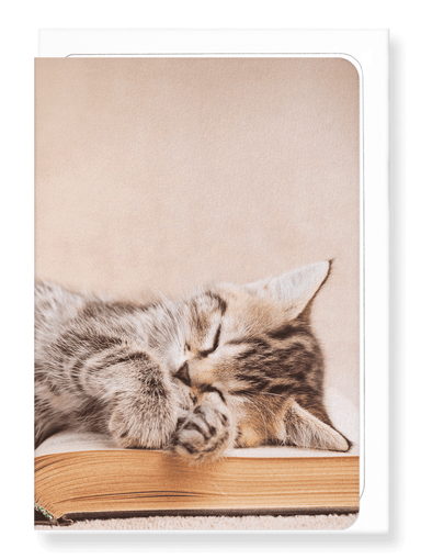 Ezen Designs - Kitten sleeping on a book - Greeting Card - Front
