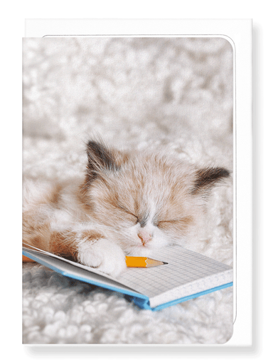 Ezen Designs - Kitten and notebook - Greeting Card - Front