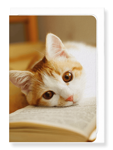 Ezen Designs - Ginger cat and book - Greeting Card - Front