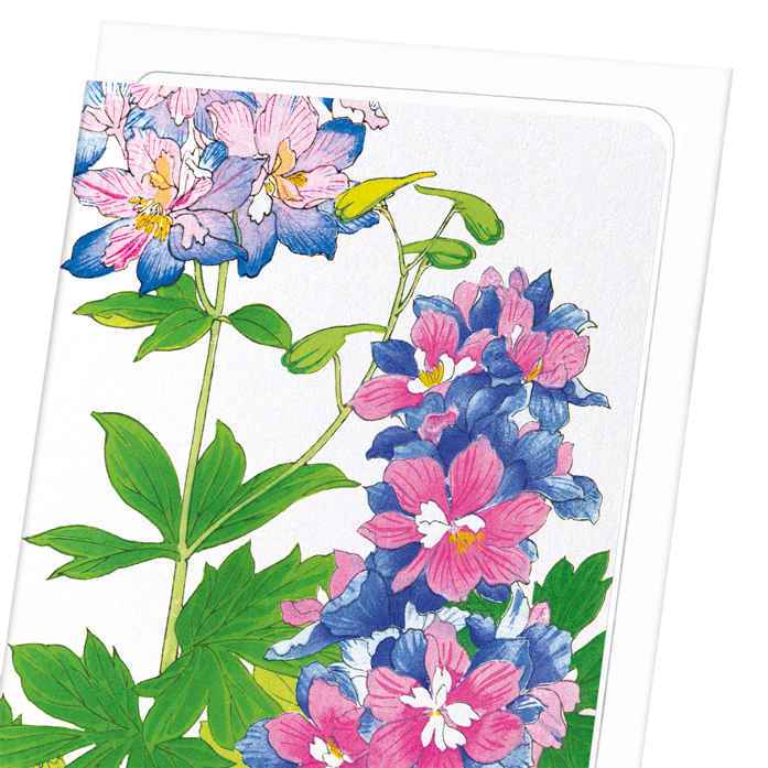 DELPHINIUM FLOWERS: 8xCards