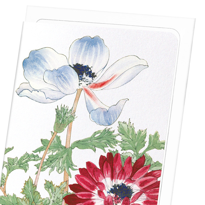 BLUE AND RED ANEMONE: 8xCards