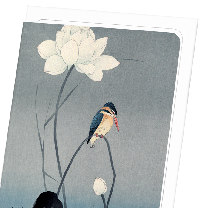 KINGFISHER AND LOTUS: 8xCards