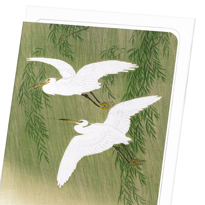 EGRETS AND WILLOW: 8xCards