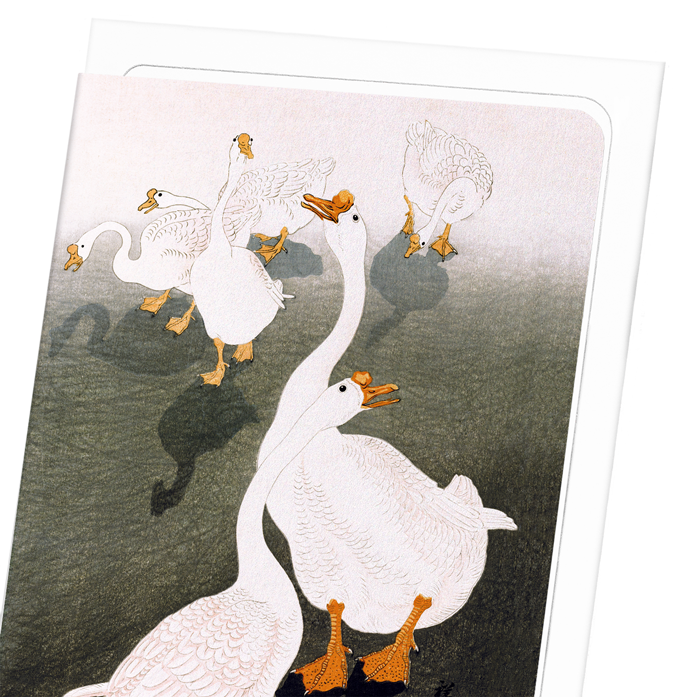GEESE: 8xCards