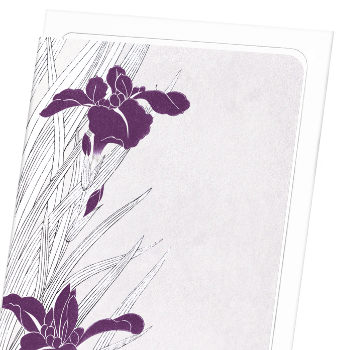 PURPLE IRIS DESIGN: 8xCards