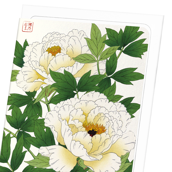 WHITE PEONY: 8xCards