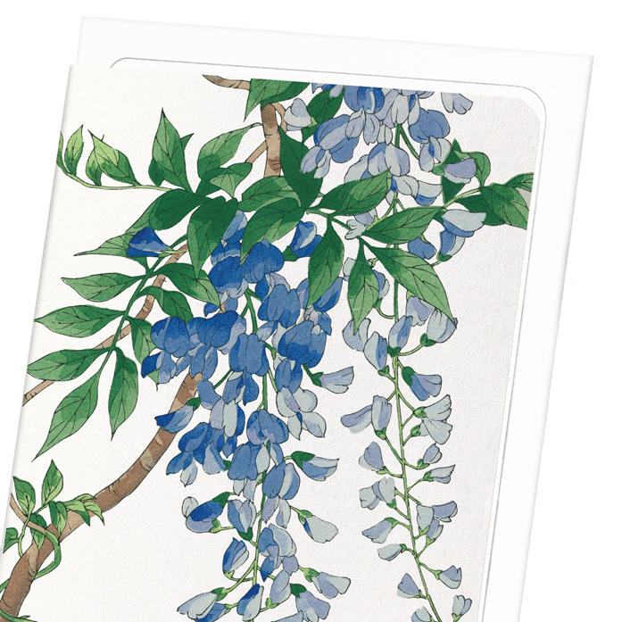 BLUE WISTERIA: 8xCards
