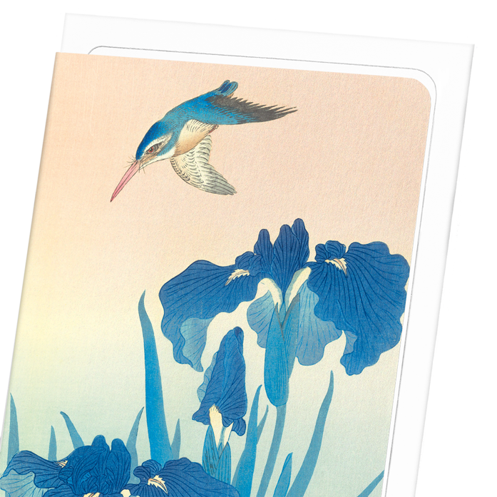 KINGFISHER AND IRIS: 8xCards