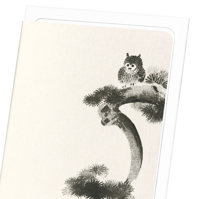 OWL ON PINE TREE: 8xCards