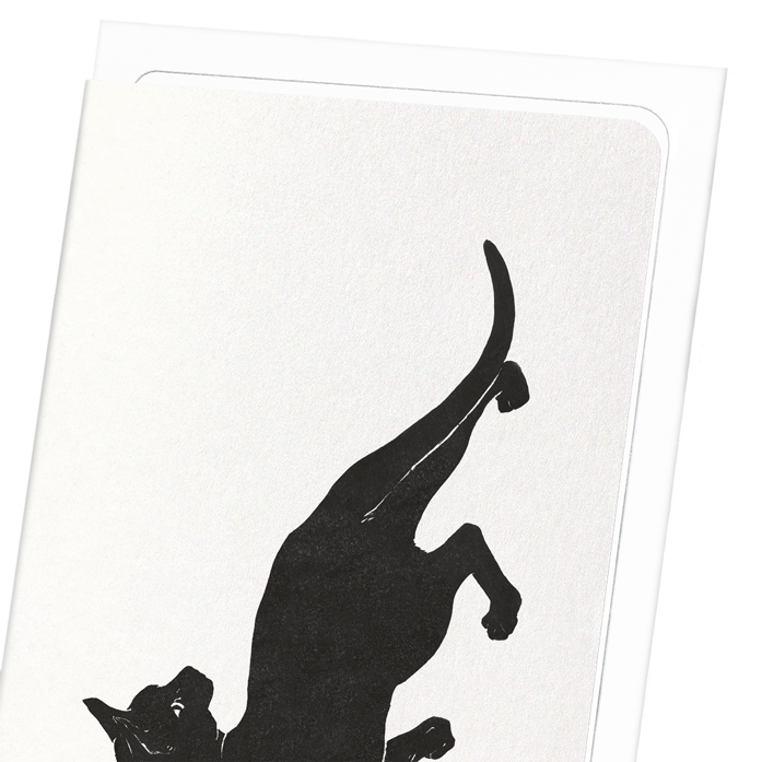 CAT NO.7: 8xCards