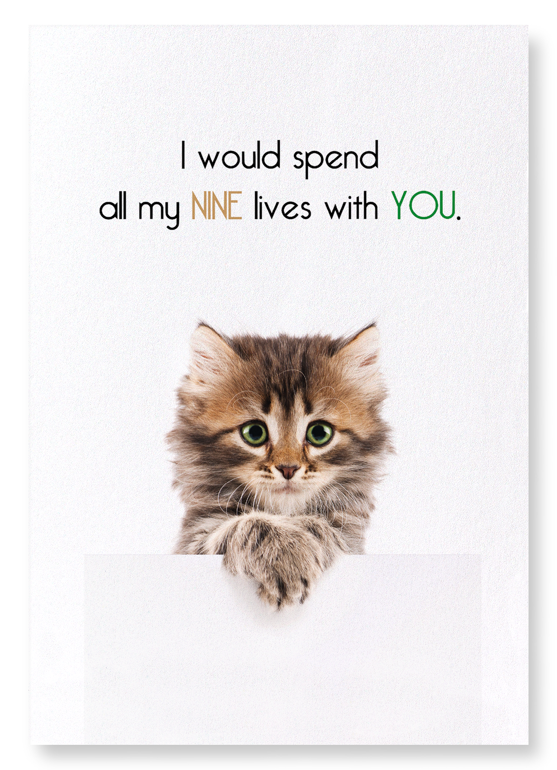 NINE LIVES WITH YOU: 2xPrints