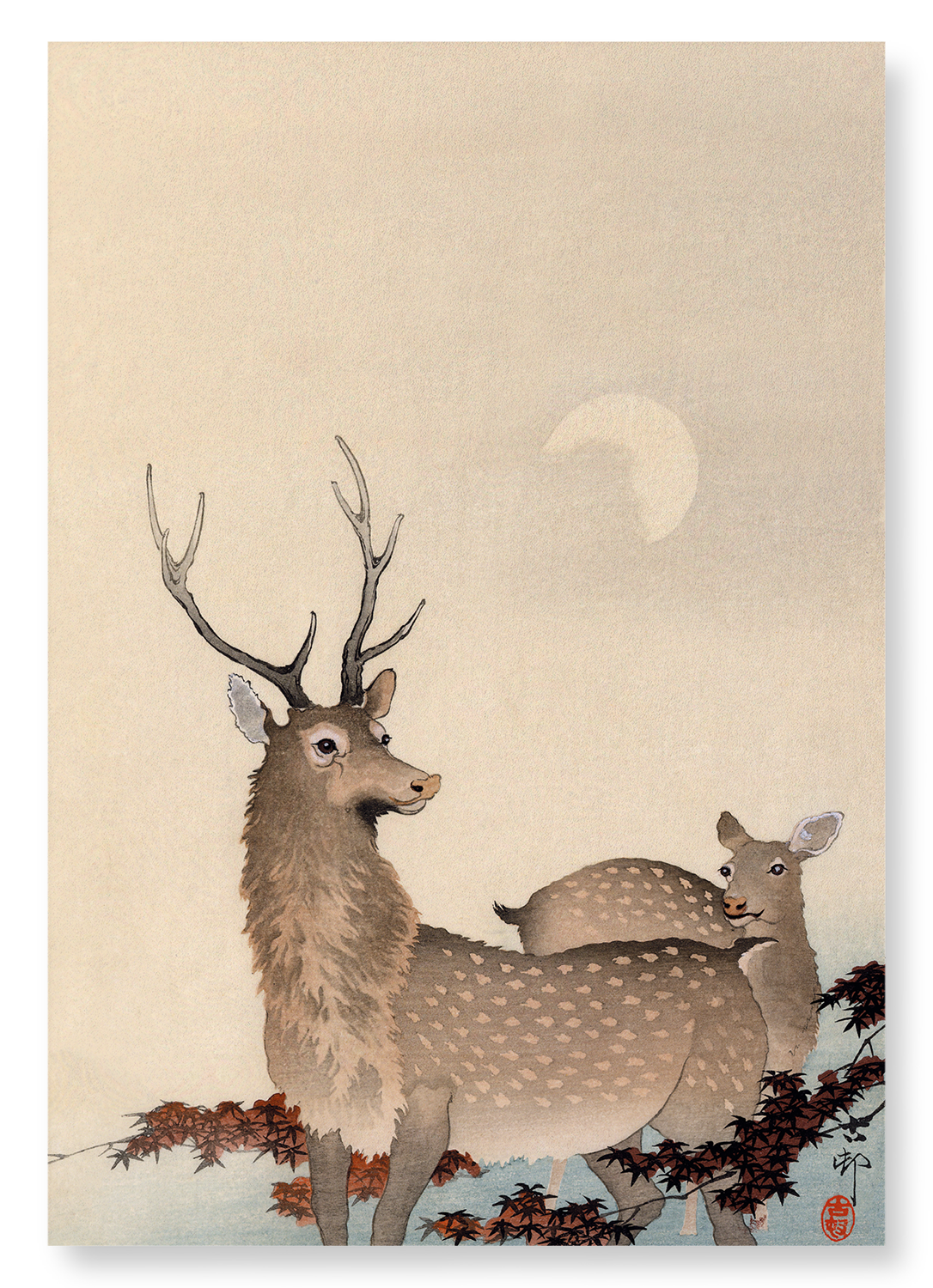 Two deer and maple: 2xPrints