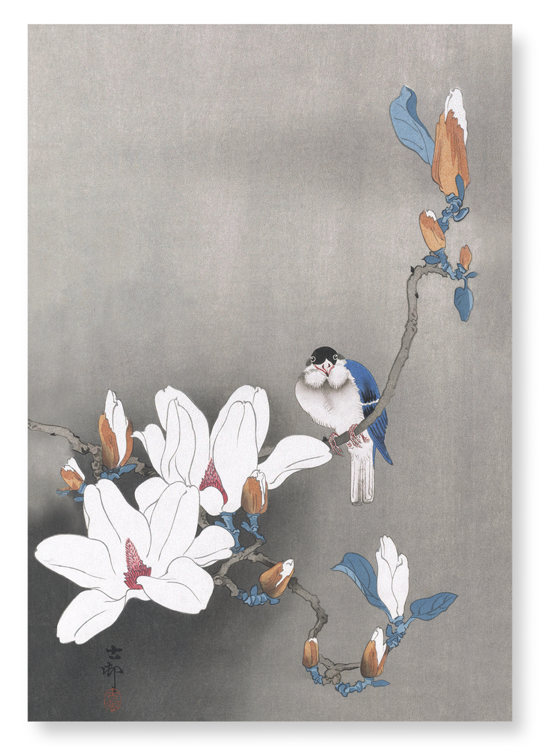 BIRD ON MAGNOLIA: 2xPrints