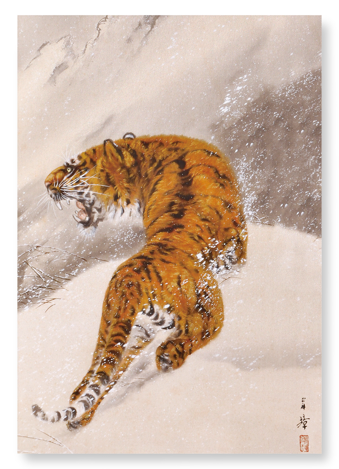 TIGER IN SNOW: 2xPrints