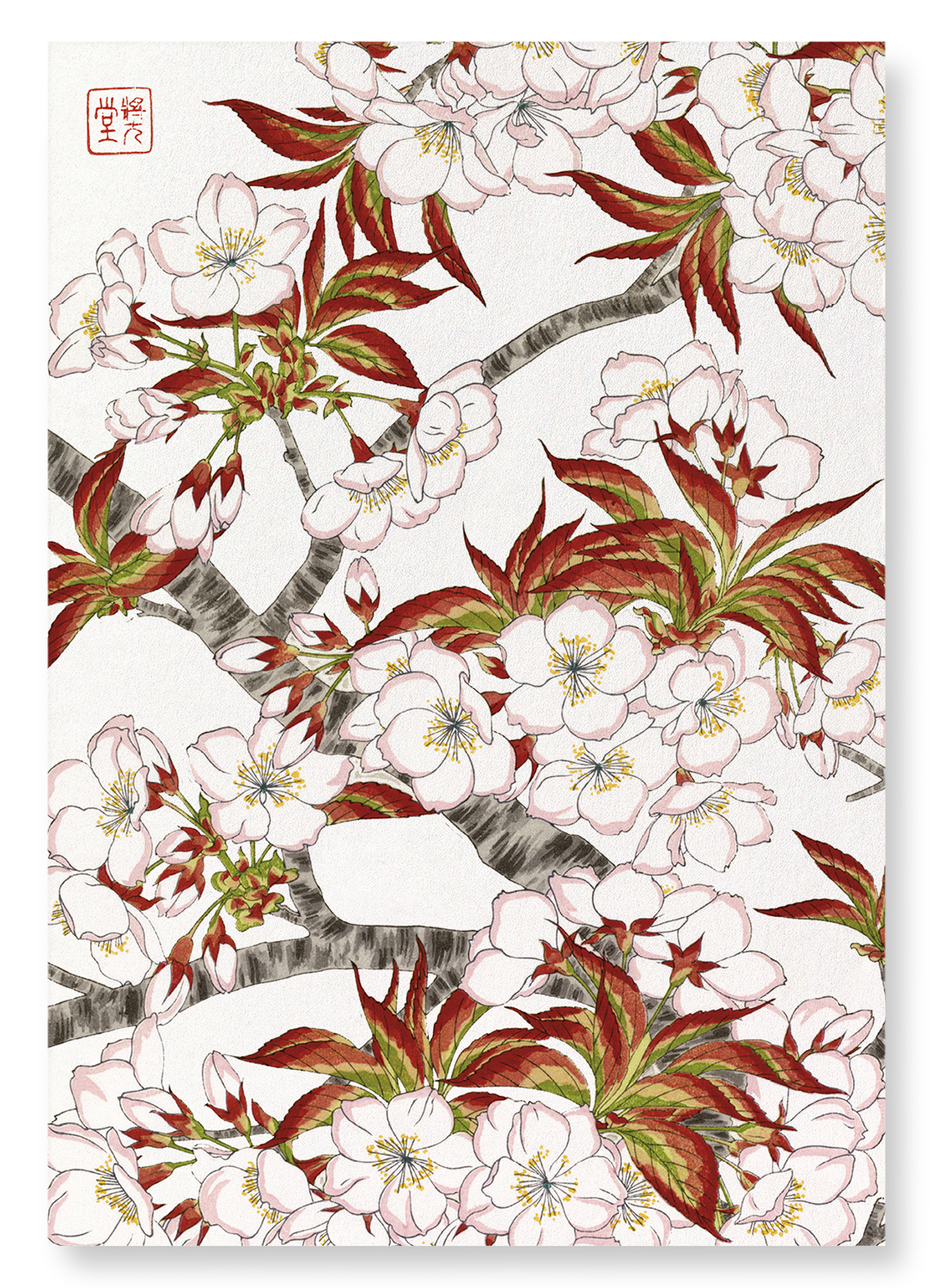 Cherry blossom flowers: 2xPrints