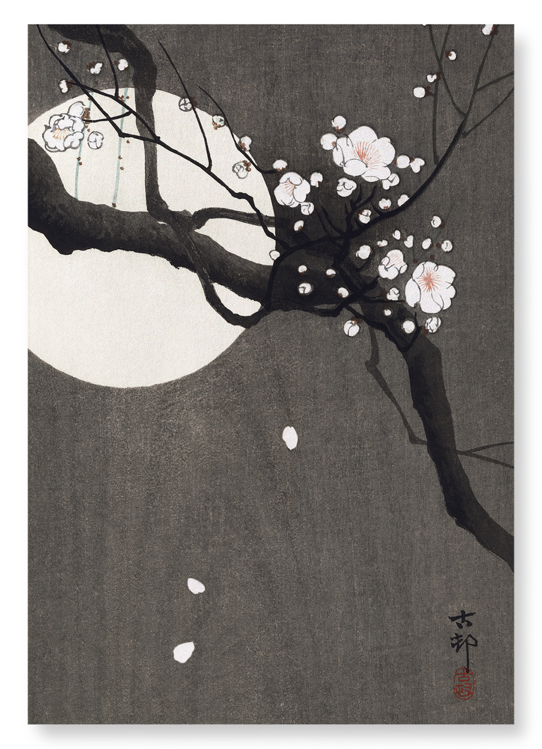 Plum blossom and full moon: 2xPrints