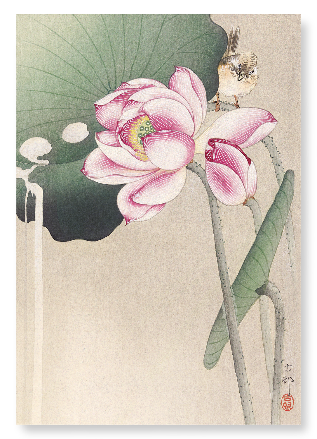 SONGBIRD AND LOTUS: 2xPrints