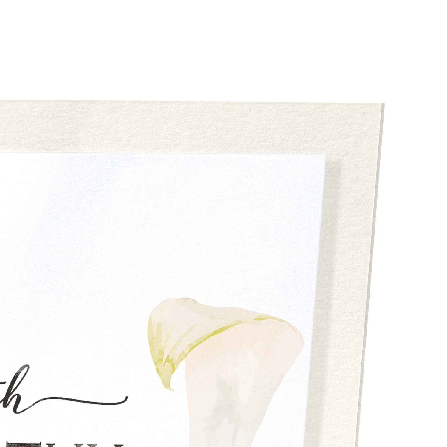 CALLA LILY OF SYMPATHY: 2xPrints