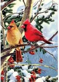 Cardinals on a Branch - Large Flag