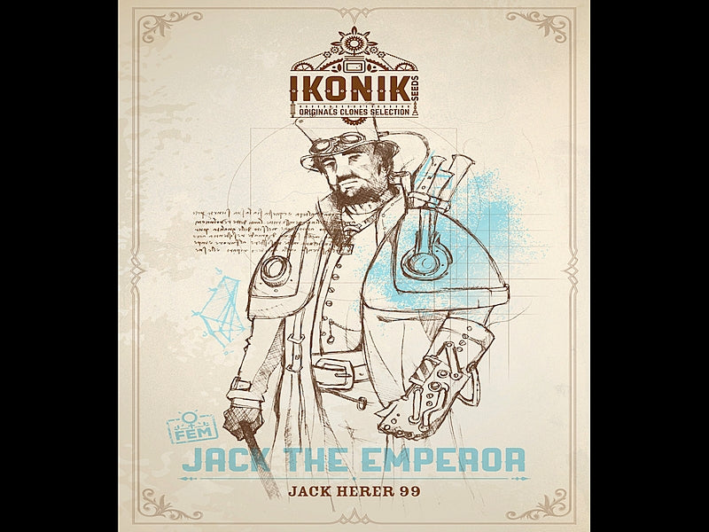 Jack the Emperor - IKONIK SEEDS