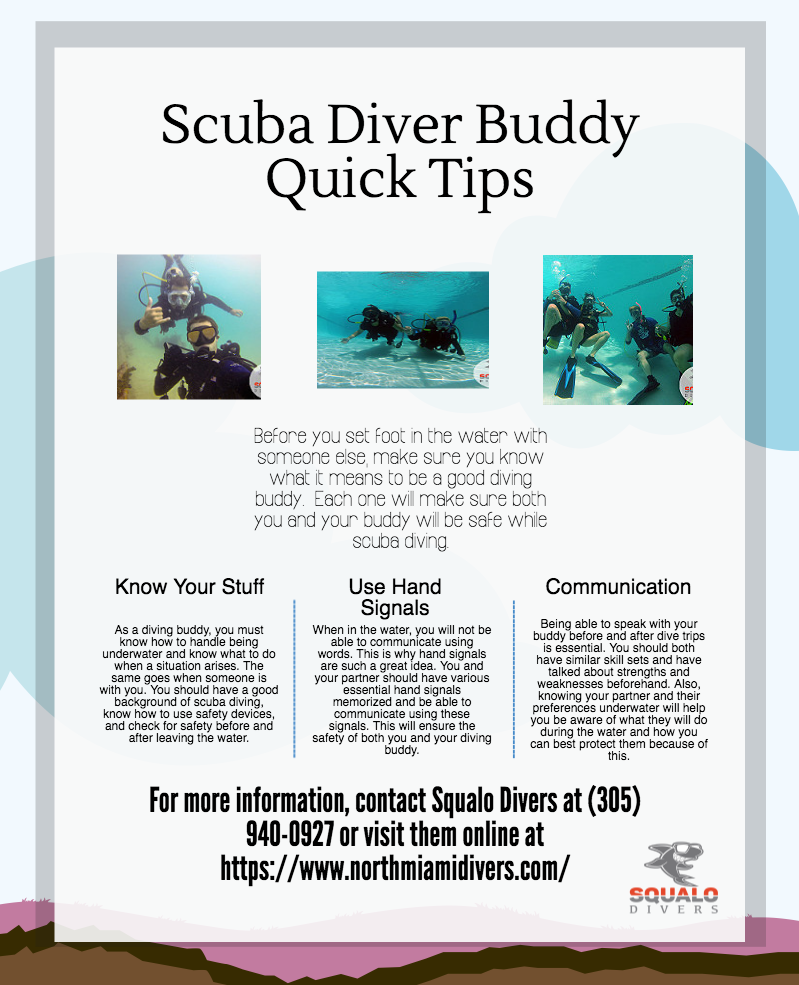 Scuba Diver Buddy Quick Tips