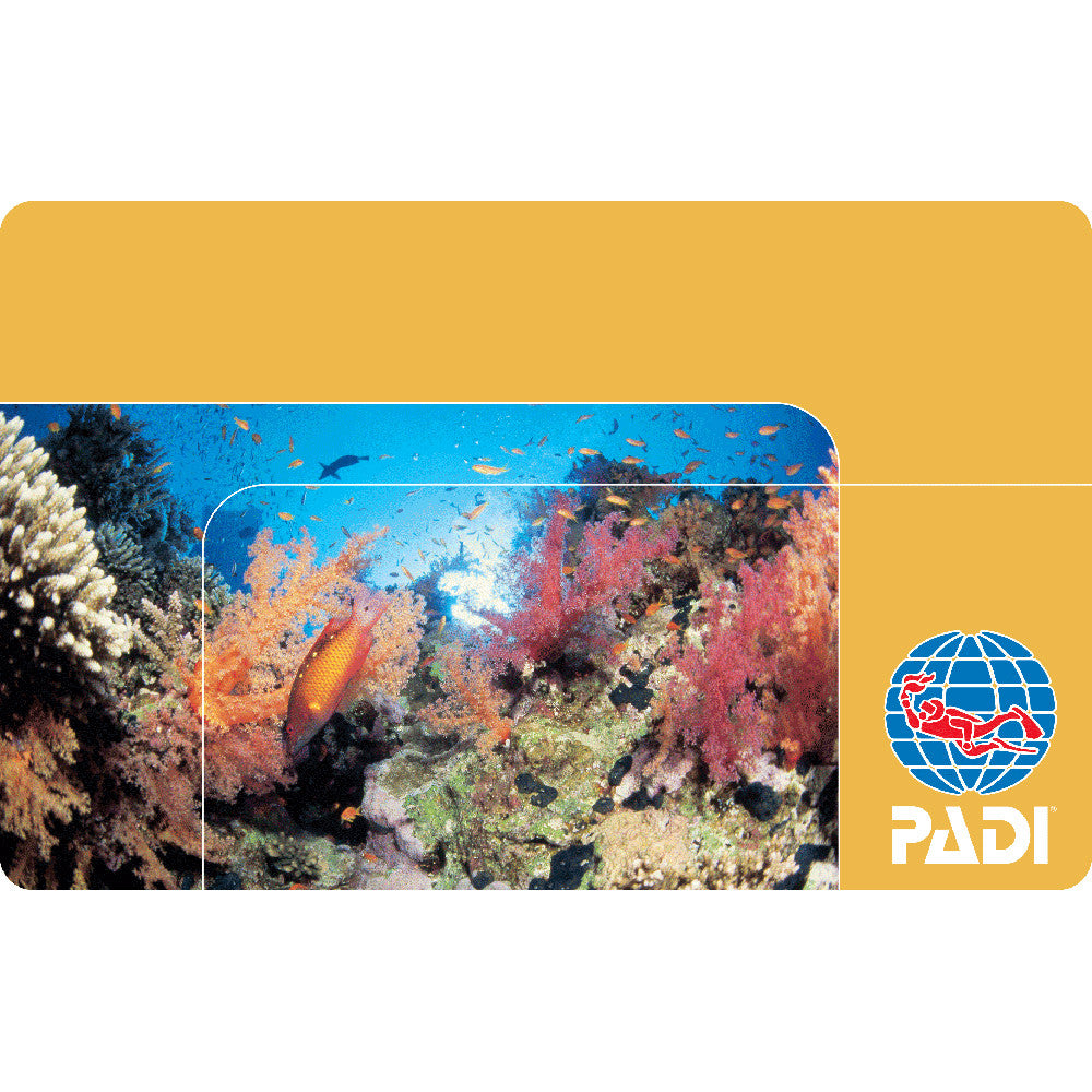PADI Replacement Card