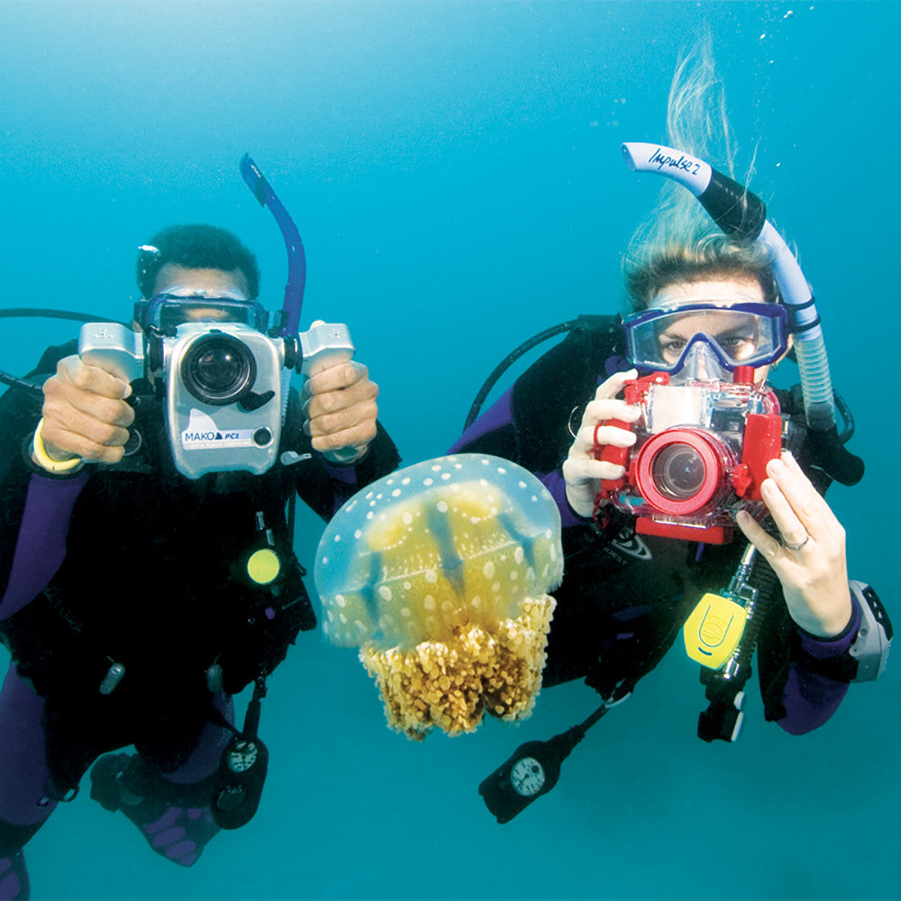 Padi digital underwater photographer specialty course scuba padi digital underwater photography specialty course 1betcityfo Gallery